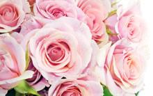 巨幅玫瑰花壁纸图片