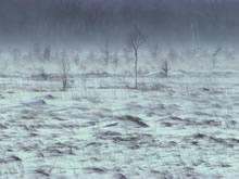 云雾风光高清晰壁纸图片