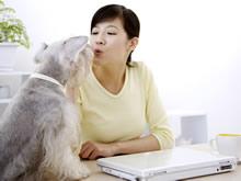 女孩与宠物高清晰壁纸
